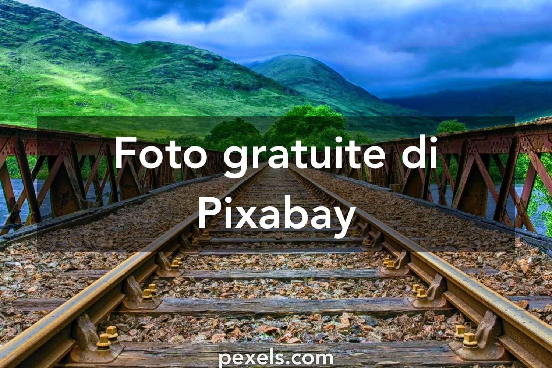Pixabay cung cấp những tấm hình rất đa dạng