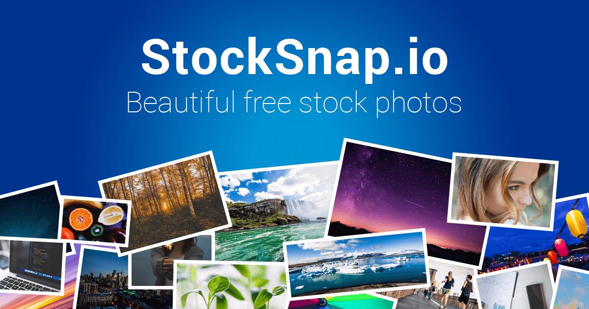 Website stocksnap luôn có những hình ảnh với chất lượng tốt nhất